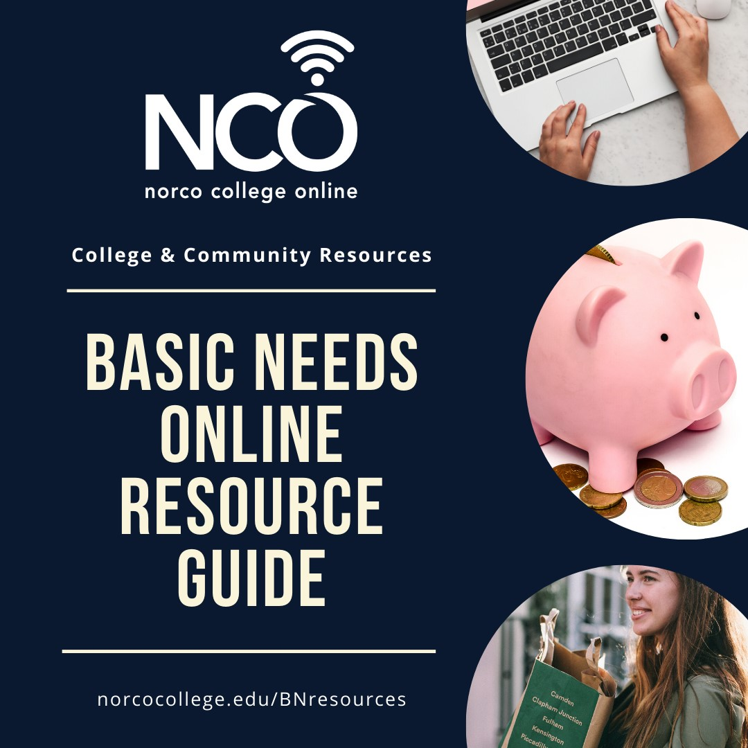 Basic Needs Online Resource Guide flyer